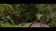 May be an image of nature, tree and railroad